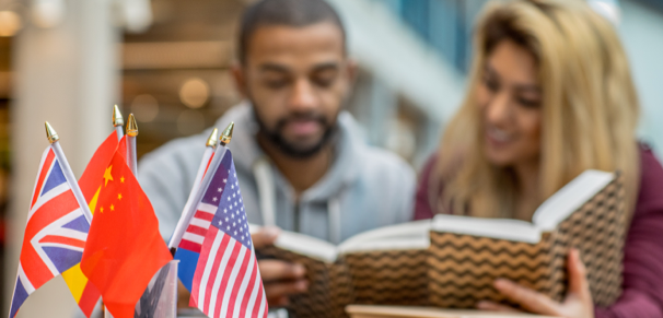 Students studying Linguistics in front of different national flags